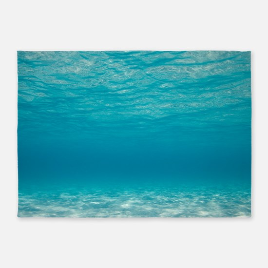 Underwater 5 X7 Area Rug