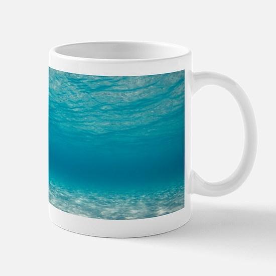 Underwater Mugs
