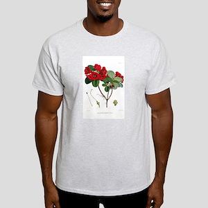 Hooker Thomsonii T-Shirt