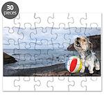 Ocean Ranger Puzzle