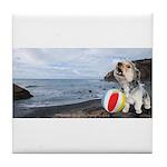 Ocean Ranger Tile Coaster