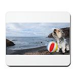 Ocean Ranger Mousepad