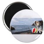 Ocean Ranger Magnet