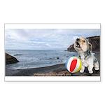 Ocean Ranger Sticker (Rectangle 10 pk)