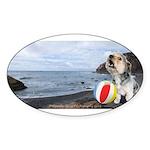 Ocean Ranger Sticker (Oval 10 pk)