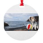 Ocean Ranger Round Ornament