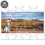 Range Ranger Puzzle