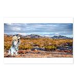 Range Ranger Postcards (Package of 8)