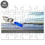 Beach Ranger Puzzle