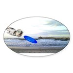 Beach Ranger Sticker (Oval 50 pk)
