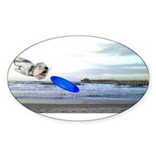 Beach Ranger Sticker (Oval)