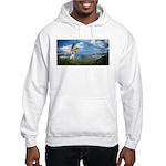Flying Ranger Hooded Sweatshirt