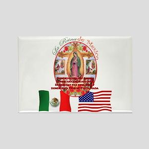 Reina de Mexico Rectangle Magnet