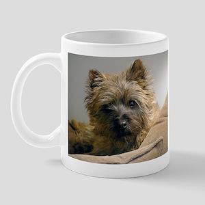 Pensive Cairn Terrier Mug