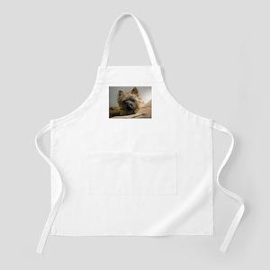 Pensive Cairn Terrier BBQ Apron