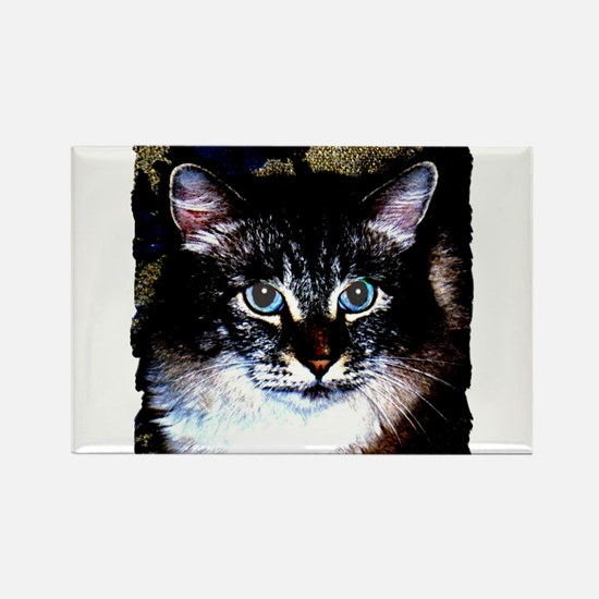 Maine Coon Cat Portrait Rectangle Magnet