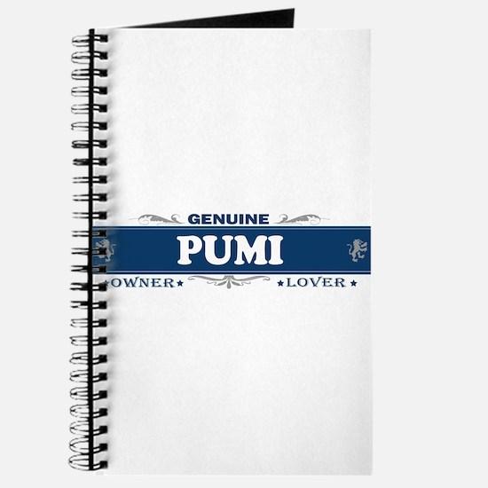 PUMI Journal