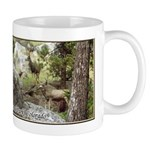 Deer In Rocky Mountain National Park Co Mugs