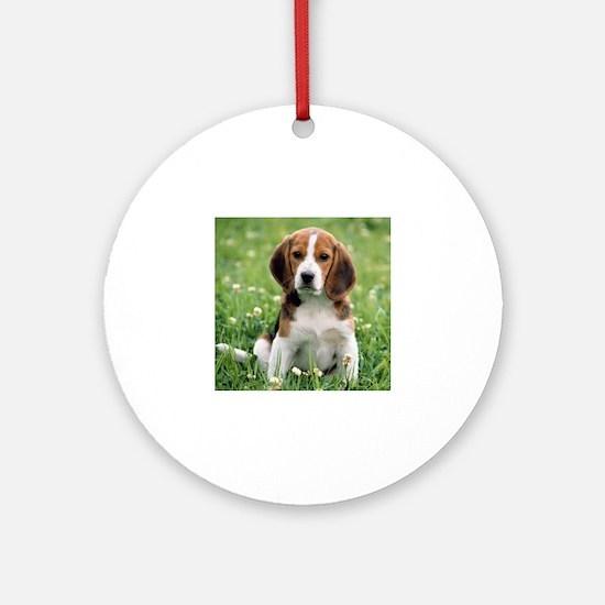 Cute Beagles Round Ornament