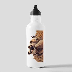 Republican Cliff Swallow Vintage Audubon Water Bot
