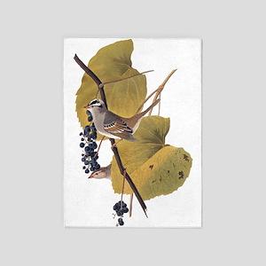 White Crowned Sparrow Vintage Audubon 5'x7'Area Ru