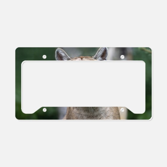 Mountain Lion License Plate Holder