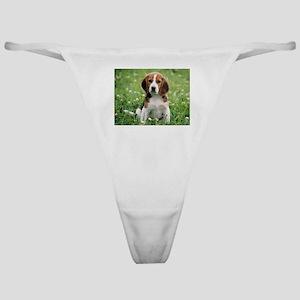 Beagle Classic Thong