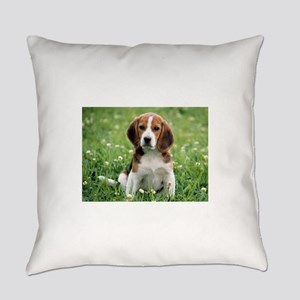 Beagle Everyday Pillow