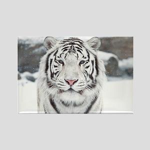 Home Decor White Tiger Rectangle Magnet