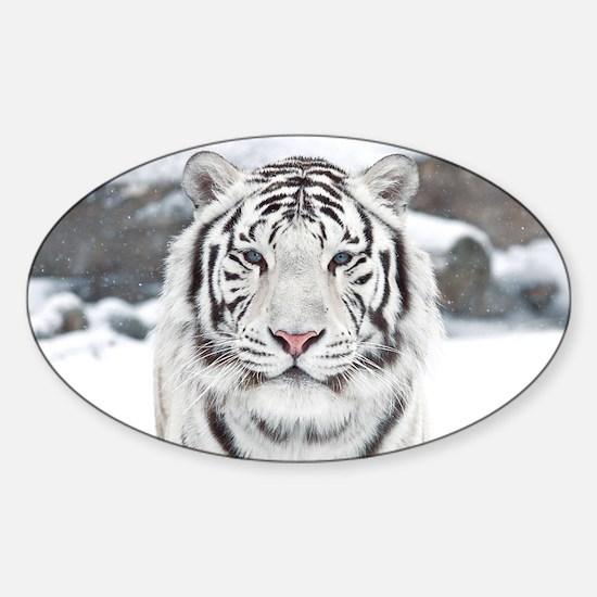 White Tiger Sticker (Oval)