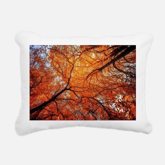 Unique Awe Rectangular Canvas Pillow