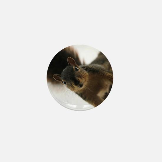 Funny Squirrel Mini Button