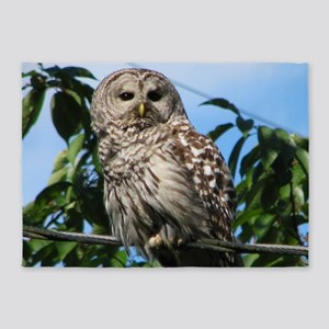 Barred Owl On Wire 5'x7'Area Rug
