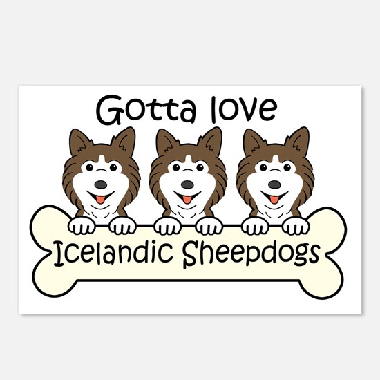 Cool Icelandic sheepdog Postcards (Package of 8)