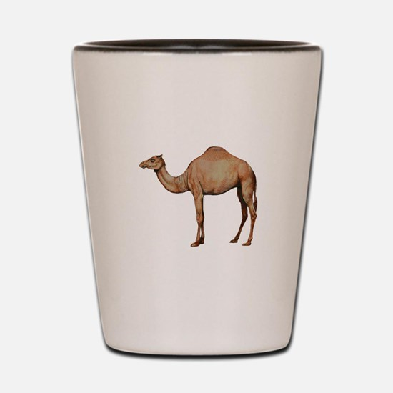 DESERT Shot Glass