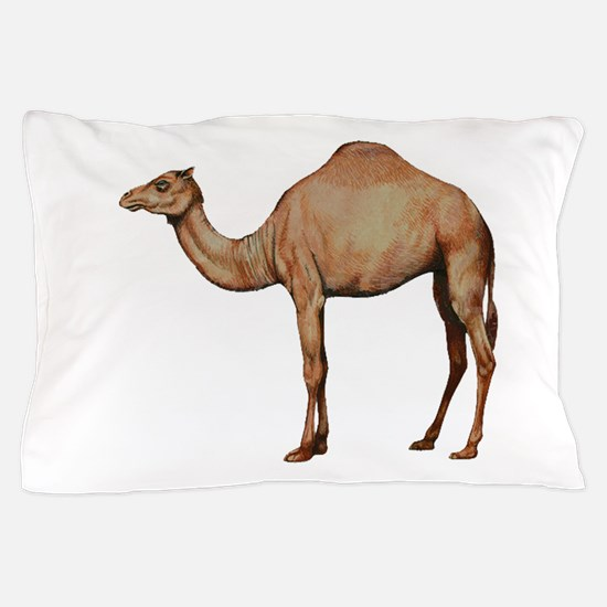 DESERT Pillow Case