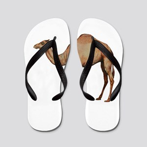 DESERT Flip Flops