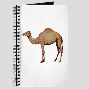 DESERT Journal