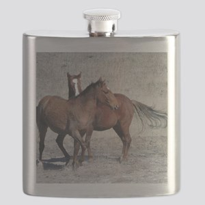 Mike, a Wild Horse of Sand Wash Basin, Color Flask