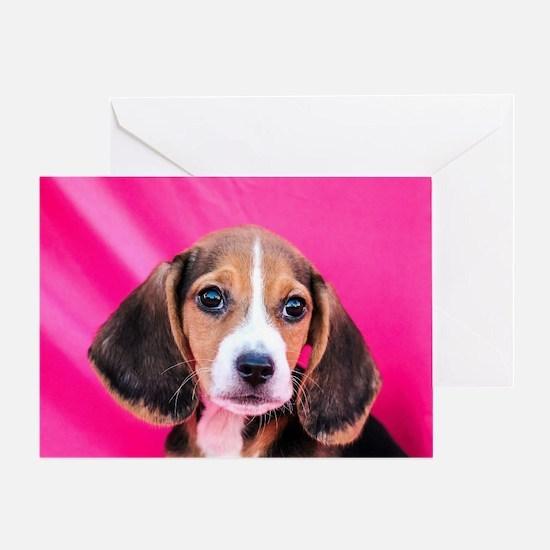 Cool Beagle valentine Greeting Card