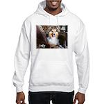 Cody Hooded Sweatshirt