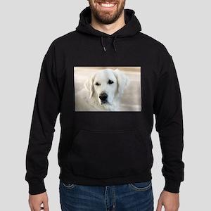 dreamstimefree_2397201 Sweatshirt