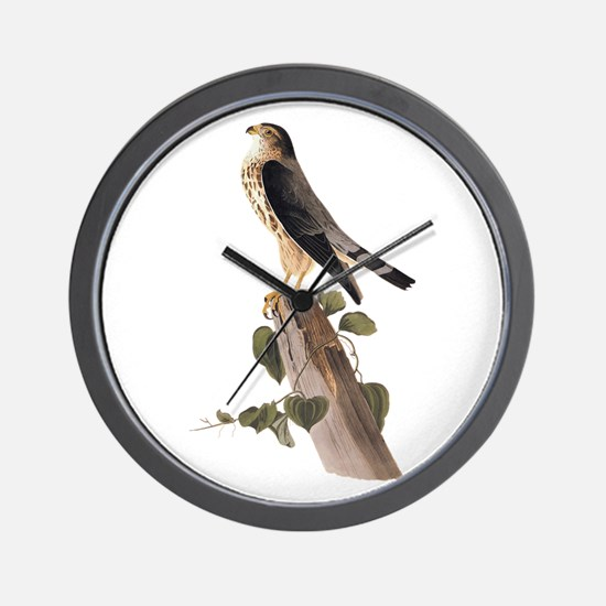 Merlin Falcon Audubon Vintage Art Wall Clock