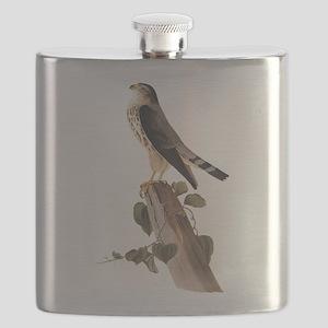 Merlin Falcon Audubon Vintage Art Flask