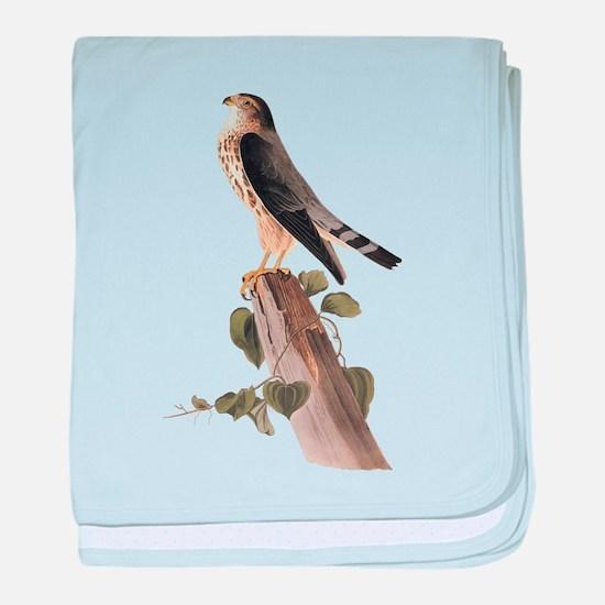 Merlin Falcon Audubon Vintage Art baby blanket