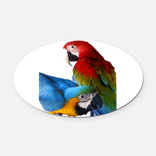 2 Macaws Oval Car Magnet