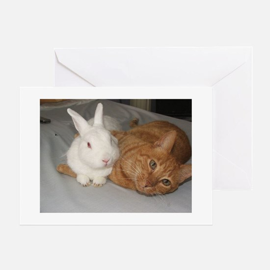 Bunny_Cat Greeting Cards