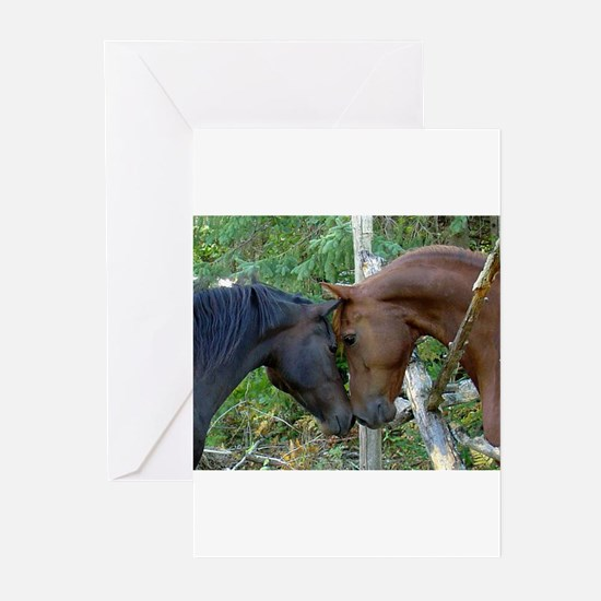 Best Friends Forever Greeting Cards
