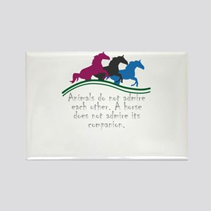 Animals do not admire each other. A horse Magnets