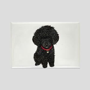 Poodle pup (blk) Magnets